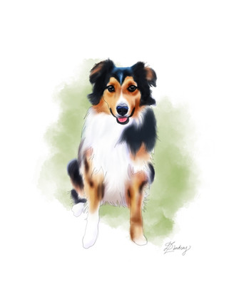 custom watercolor & ink dog portrait