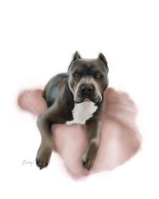 custom watercolor & ink pet portrait