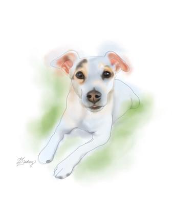custom watercolor & ink pet portrait painting