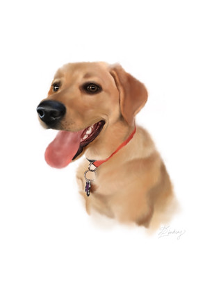 realistic watercolor pet portrait