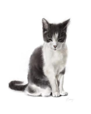 realistic watercolor style cat portrait