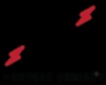 ZZ graf logo_edited.png