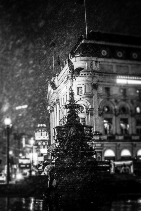 Picadilly Snow