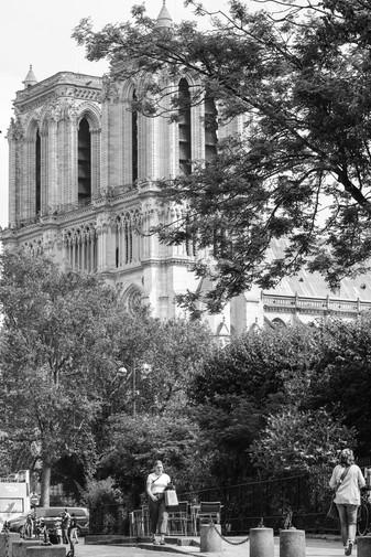 Notre Dame Paris Web.jpg