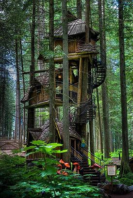 amazing-treehouses-4 (1).jpg