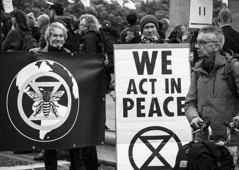 Peaceful Warriors.jpg