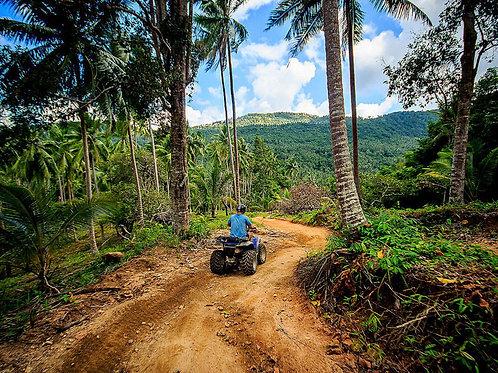 Jungle Quat Tour 2 Std