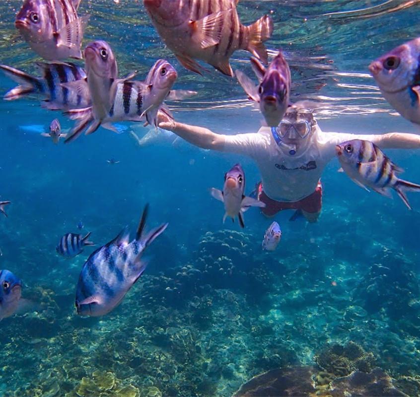 Unterwasser welt in Angthong