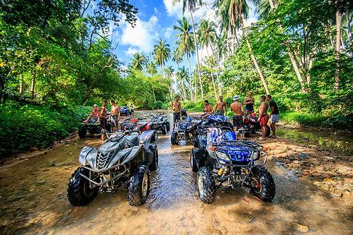 Jungle Quat Tour 1 Std