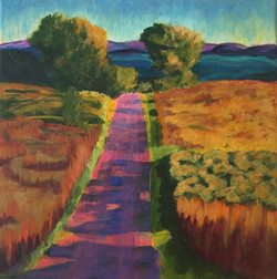 Pink road with shadows