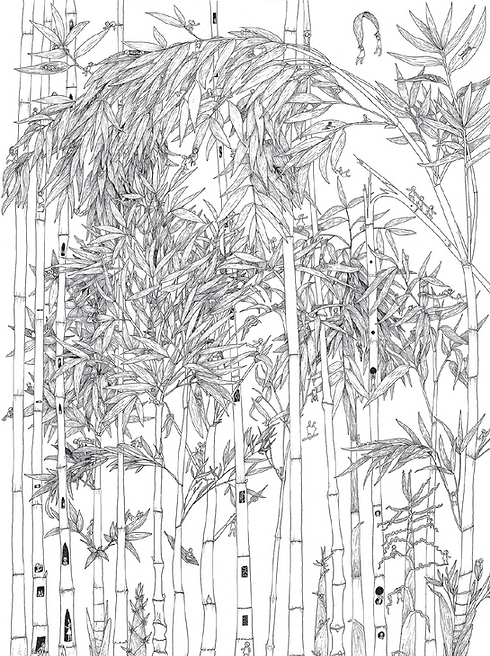 03_bamboo T_P-2.png