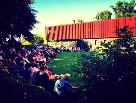 Public_concert_privé_JMO_île-de-Patiras .jpg