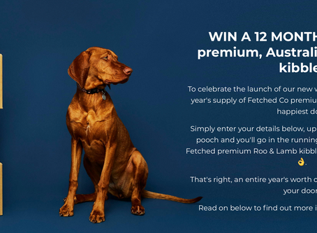Are you Australia's Happiest Dog?