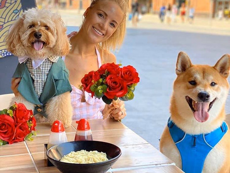 The best ways to spend Valentine's weekend with your pet