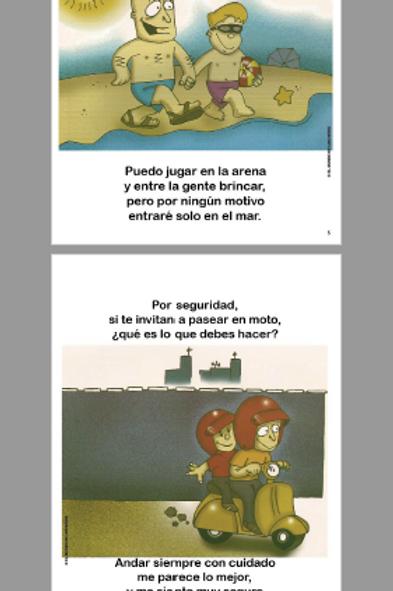 libro sobre SEGURIDAD