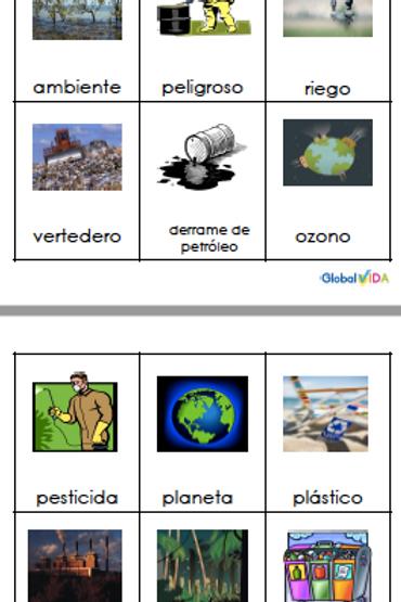 El medio ambiente;Palabras de vocabulario