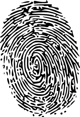 winnipeg-fingerprint-services-412x600.png