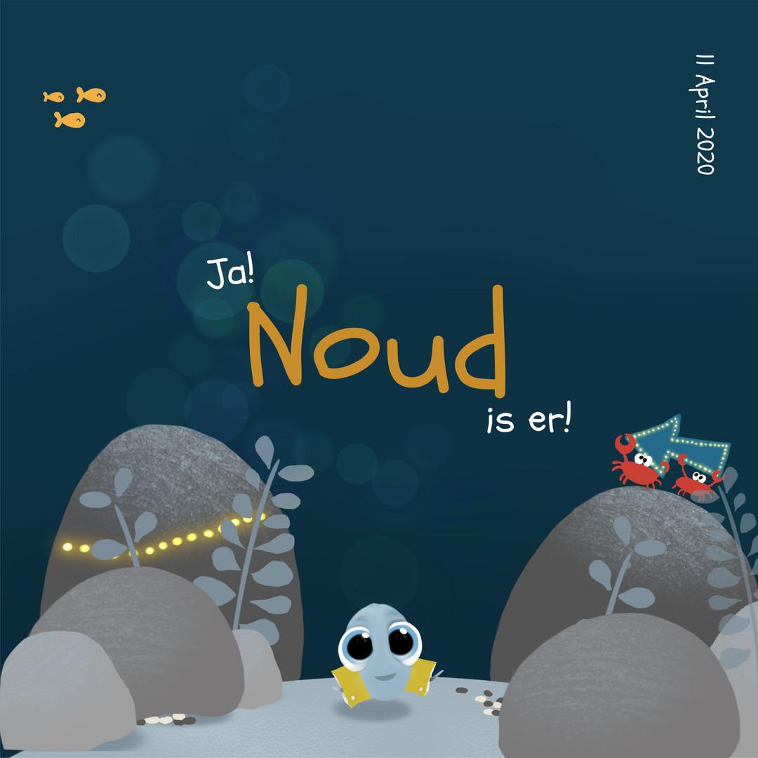 Voorzijde geboortekaart Noud onderwater.