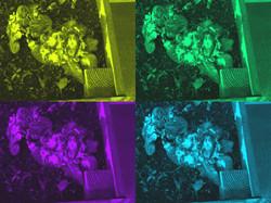 BHJS Yr3 Maisie Sheedy 2.jpg