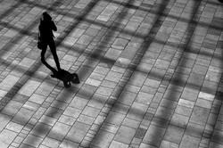 17_Through The Shadows_Paul Gough.JPG