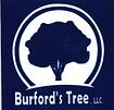 burford logo.PNG