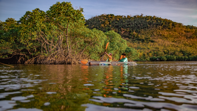 Clear Kayak Royal Island Coron Waterspor