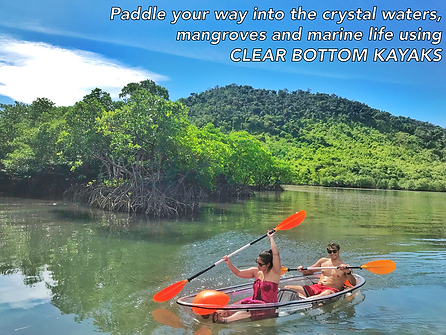 Clear Kayak Royal Island Watersports Coron