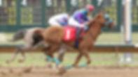 Arabian Racing Photo 1  Lil-Rich-Girl-Ke