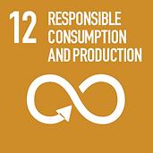 SDG12.png