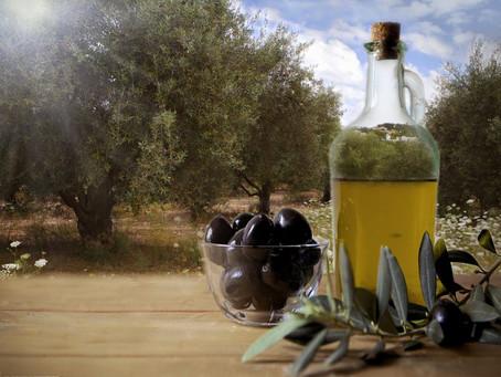¿Cómo escoger un buen aceite de calidad? | Todo lo que debes saber
