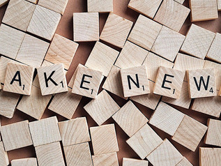 Blog: Fake News