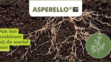 ASPERELLO® T34 Biocontrol® in potplanten