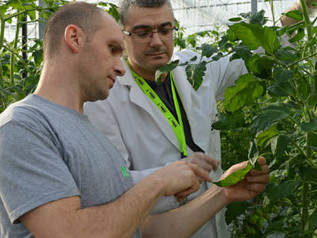 Biobest Group en DCM over PMV®-01
