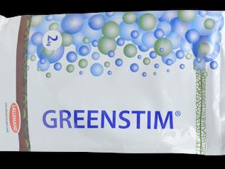 Greenstim® helpt aardbeien  in perioden van stress