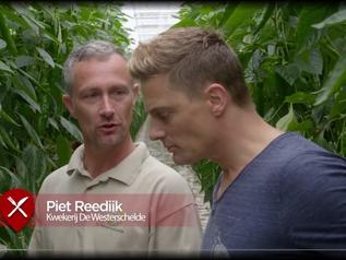 Kw. De Westerschelde in beeld bij Nederland Proeft (RTLXL)