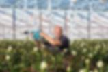 Nutrimite verblazer Biobest Nederland