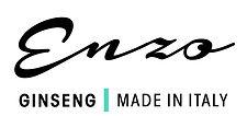 Enzo Logo JPEG.jpg