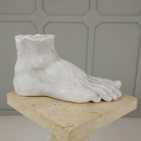 Plaster Study of a Foot