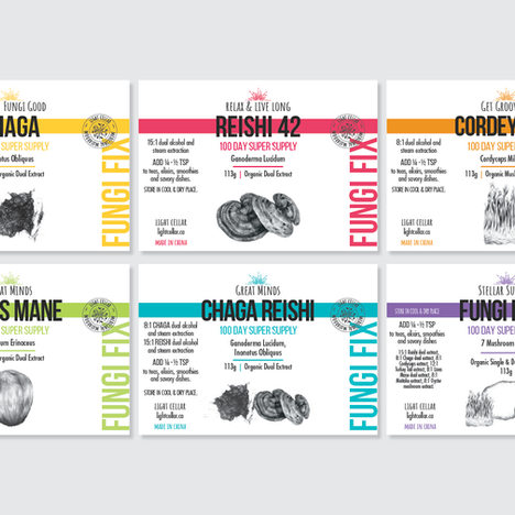 Light Cellar Packaging Design