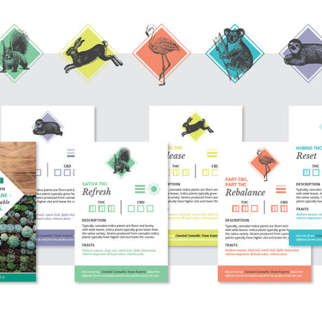 Contract | Cannabis Card Design