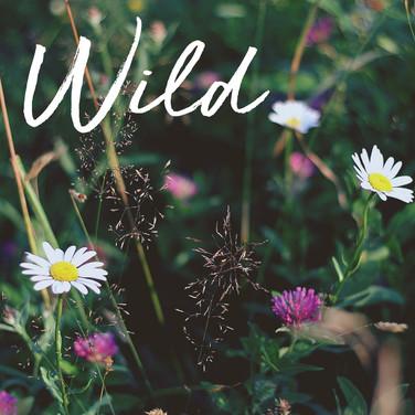 WildBeauty-SM-01.jpg