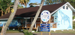 Whale & Sea Life Centre