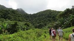 Cross-Island Trek Rarotonga