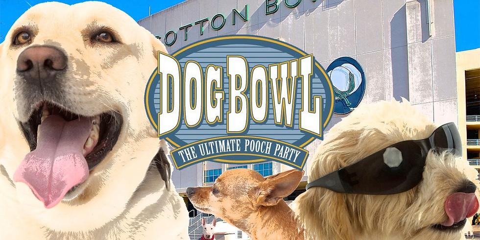 Dog Bowl @ the Cotton Bowl 2020