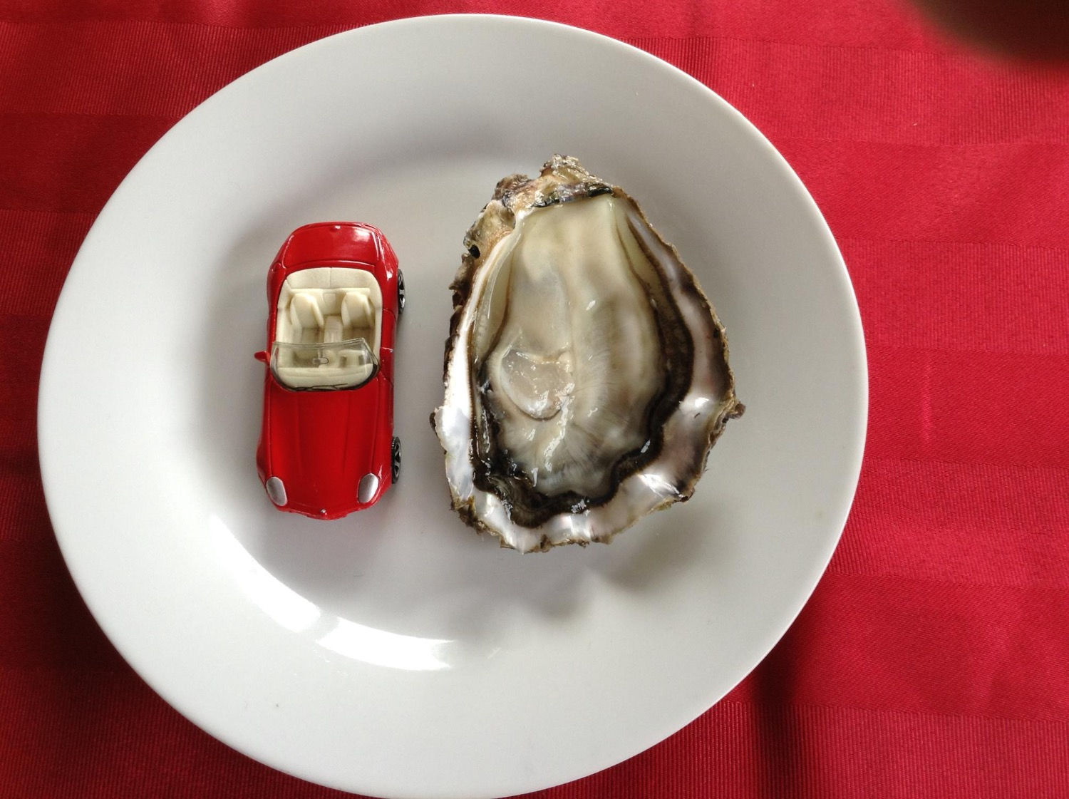 PREMIUM PACIFIC OYSTERS