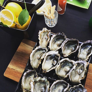 Aucklands most desirable oysters!_#black