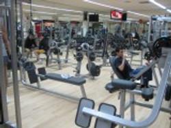 Musculació