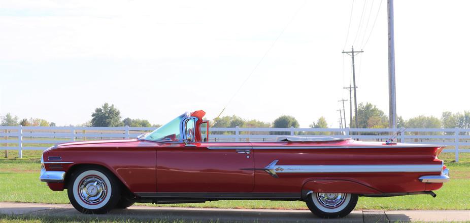 Impala (4).JPG