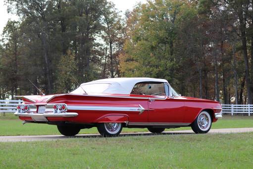 Impala (29).JPG