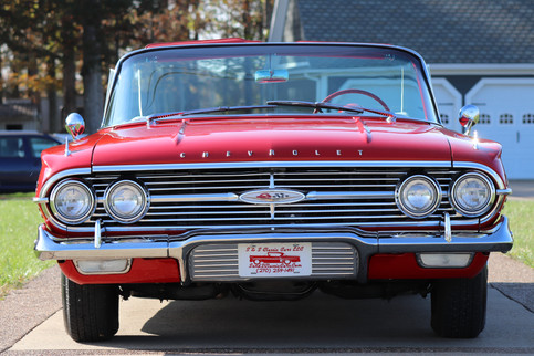 Impala (6).JPG